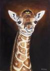 Žirafa mládě