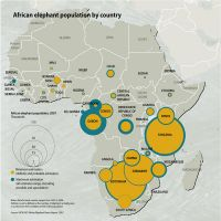 african-elephant-population-by-country 0858