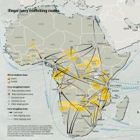 illegal-ivory-trafficking-routes 486e