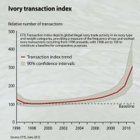 z ivory-transaction-index b8cf