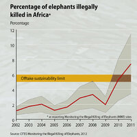 z percentage-of-elephants-illegally-killed-in-africa fd31